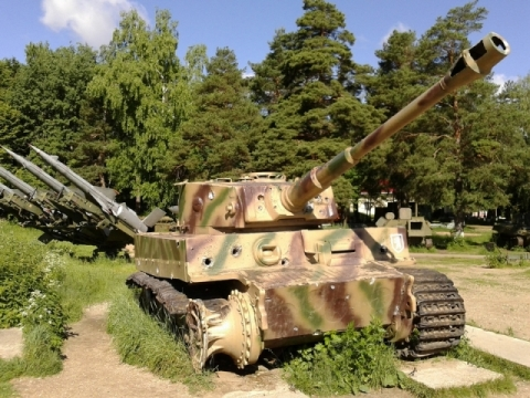 Tiger in Russia
